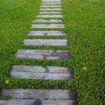 Die Kraft der kleinen Schritte