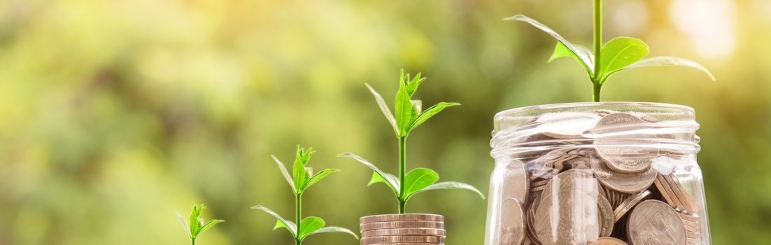 Geld und Wachstum