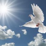 Eine kleine Geschichte der Wandlung: Gott